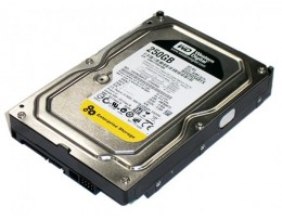 HDD 250G WDC RE4 7200rpm 64M Cache Sata III